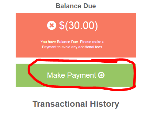 Make one time payment.PNG